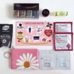 Vegan Cuts Holiday Beauty Box Review – December 2013