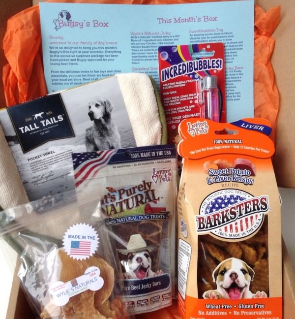 Bugsy's Box Review + Discount – April 2014