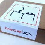 Meowbox Review + Promo Code – June 2014
