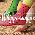 Whippersnappers by Foot Cardigan – Sock Subscription for Kids