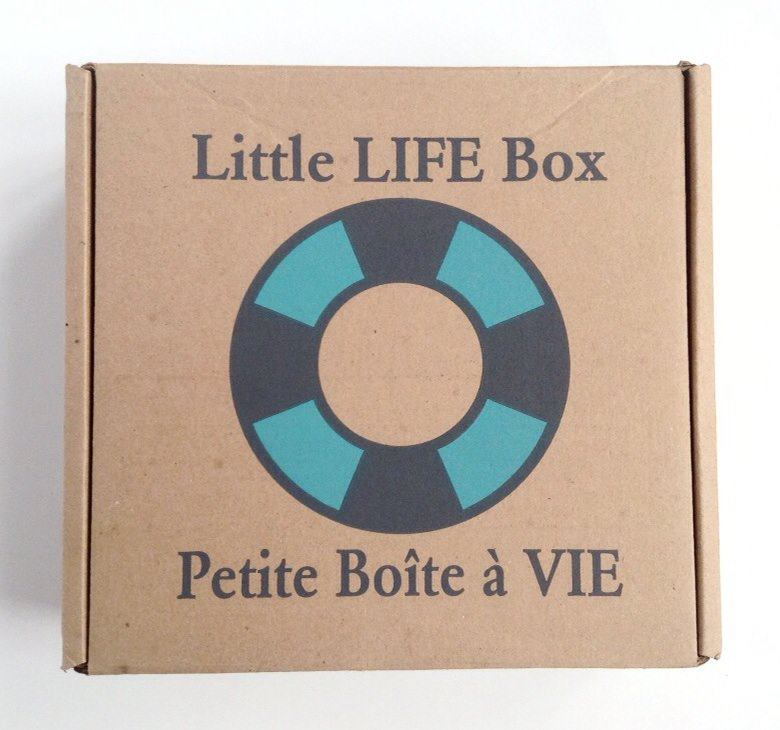 Little Life Box Review + Promo Code – October 2014