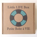 Little Life Box Review + Promo Code – December 2014