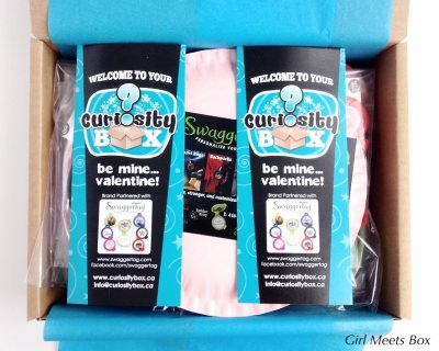 Curiosity Box Review – February 2015