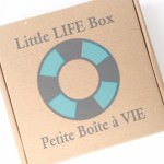 Little Life Box Review + Promo Code – August 2015