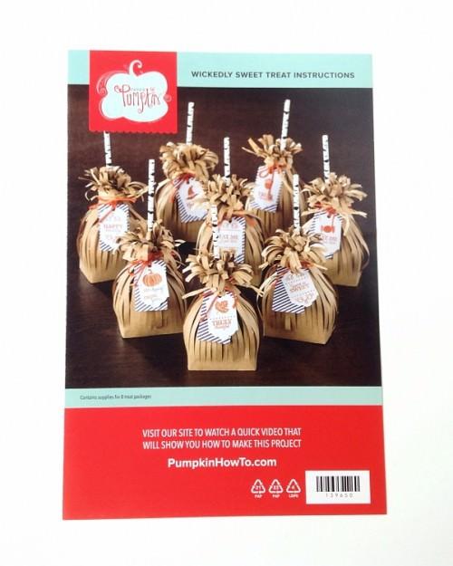Paper Pumpkin Review – September 2015