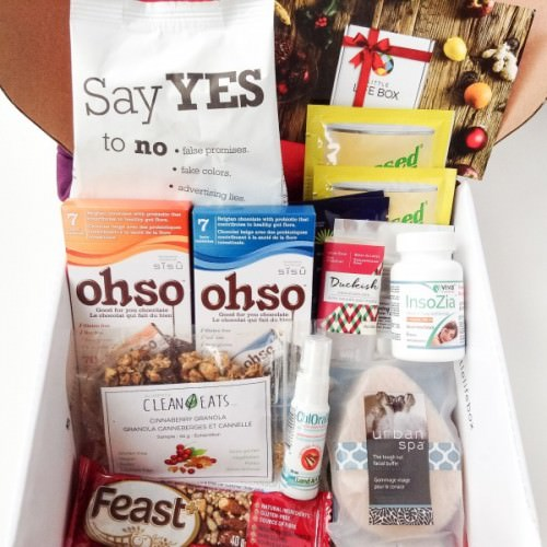 Little Life Box Review + Promo Code – December 2015
