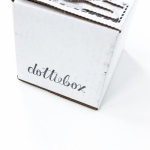 Dottiebox Mini Review – January 2016