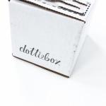 Dottiebox Mini Review – January 2016