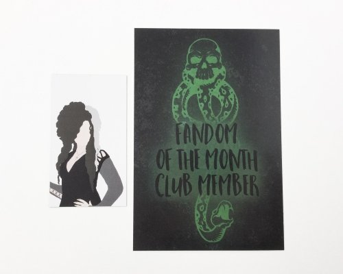 Fandom Of The Month Club Review + Coupon Code – January 2016