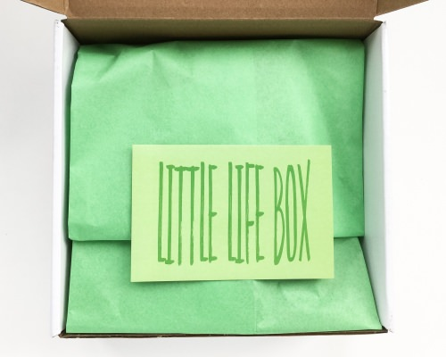 Little Life Box Review + Promo Code & GIVEAWAY – March 2016