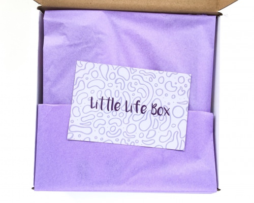 Little Life Box Review + Promo Code – May 2016