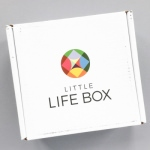 Little Life Box Review + Promo Code – September 2016
