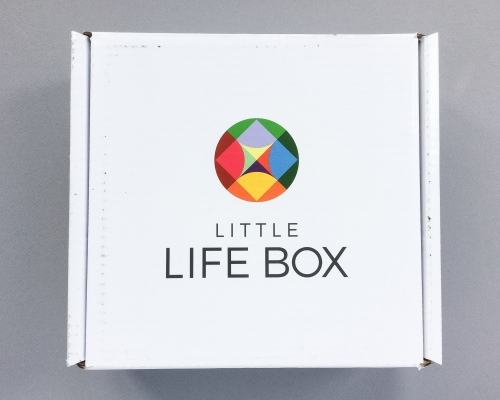 Little Life Box Review + Promo Code – October 2016