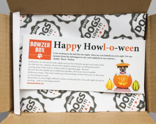 Bowzer Box Review + Discount Code – October 2016