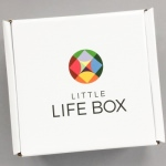 Little Life Box Review + Promo Code – November 2016