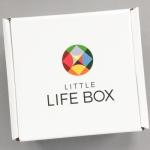 Little Life Box Review + Promo Code – November 2016