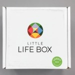 Little Life Box Review + Promo Code – December 2016