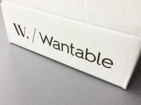 Wantable Intimates Box Review – December 2016