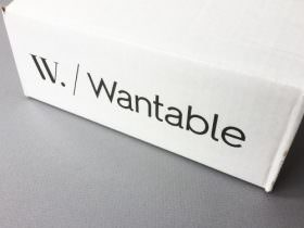 Wantable Intimates Box Review – January 2017