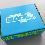 Nerd Block Jr. Boys Review – January 2017