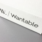 Wantable Intimates Box Review – February 2017