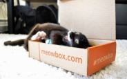 Meowbox*