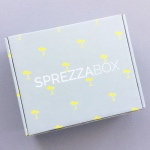 SprezzaBox Review + Coupon Code – March 2017