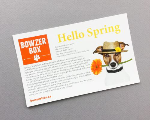 Bowzer Box Review + Discount Code – April 2017