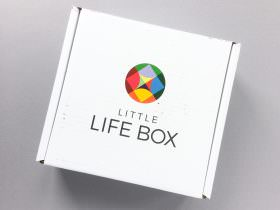 Little Life Box Review + Promo Code – May 2017