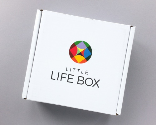 Little Life Box Review + Promo Code – June 2017
