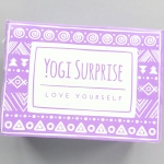 Yogi Surprise Subscription Box Review + Coupon Code – June 2017