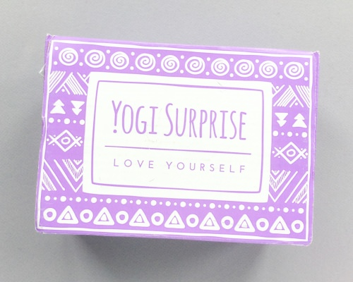 Yogi Surprise Subscription Box Review + Coupon Code – June 2017