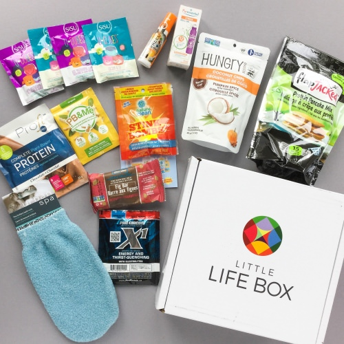 Little Life Box Subscription Box Review + Promo Code – August 2017