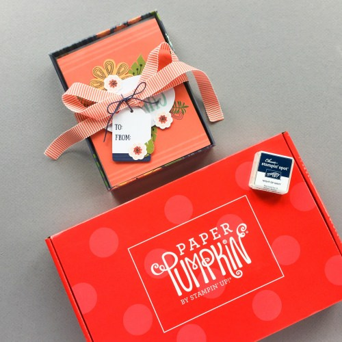 Paper Pumpkin Subscription Box Review + Promo Code – August 2017