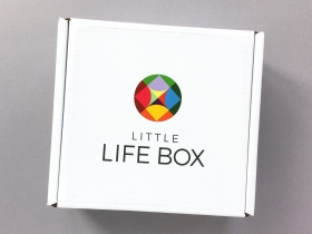 Little Life Box Subscription Box Review + Promo Code – September 2017