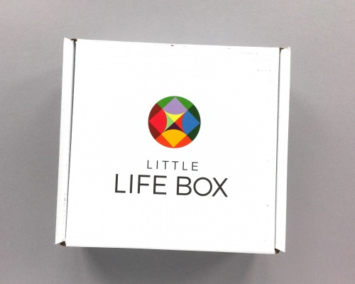 Little Life Box Subscription Box Review + Promo Code – October 2017