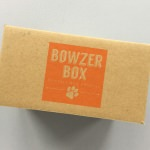 Bowzer Box Review + Discount Code – November 2017