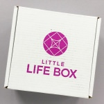 Little Life Box Subscription Box Review + Promo Code – November 2017