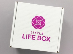 Little Life Box Subscription Box Review + Promo Code – November 2017
