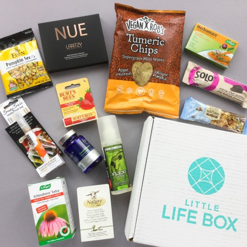 Little Life Box Subscription Box Review + Promo Code – December 2017