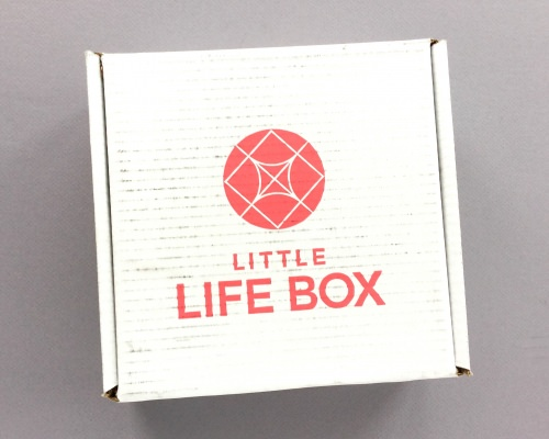 Little Life Box Subscription Box Review + Promo Code – January 2018