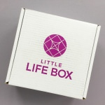 Little Life Box Subscription Box Review + Promo Code – February 2018