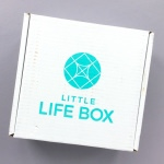 Little Life Box Subscription Box Review + Promo Code – March 2018
