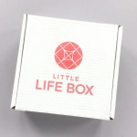 Little Life Box Subscription Box Review + Promo Code – April 2018
