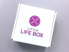 Little Life Box Subscription Box Review + Promo Code – June 2018