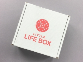 Little Life Box Subscription Box Review + Promo Code – July 2018