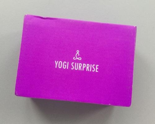 Yogi Surprise Subscription Box Review + Coupon Code – August 2018