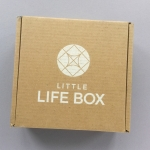 Little Life Box Subscription Box Review + Promo Code – October 2018