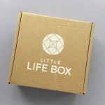 Little Life Box Subscription Box Review + Promo Code – November 2018