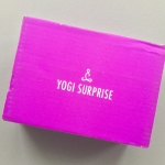 Yogi Surprise Subscription Box Review + Coupon Code – October 2018